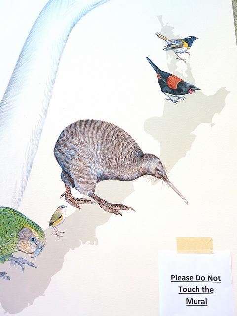 Jane Kim of Ink Dwell: amazing bird mural at Cornell University