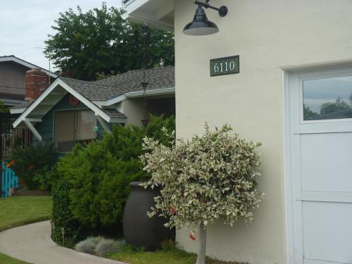 Nutmeg Designs House Number